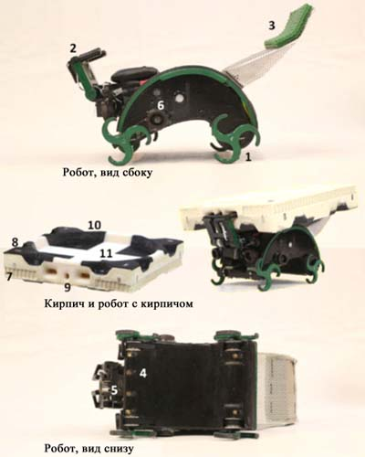 Так выглядит робот-термит
