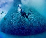 Экономическое значение Тихого океана