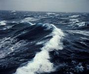 Тихий океан какой? Самый-самый-самый!