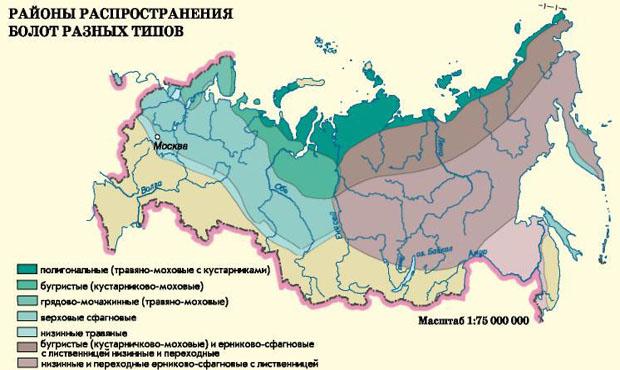 Распространение заболоченных территорий в России. Карта болот России.