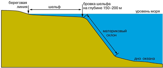 Строение дна океана