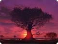 Оптические явления в атмосфере, закат (заход) Солнца, Пурпурный свет