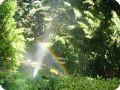 Искусственная радуга в распылителе воды.